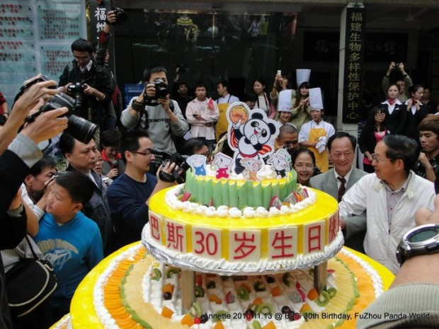 2010-11-13-Fuzhou-Panda-World-Basis-30th-Birthday-005-620x465