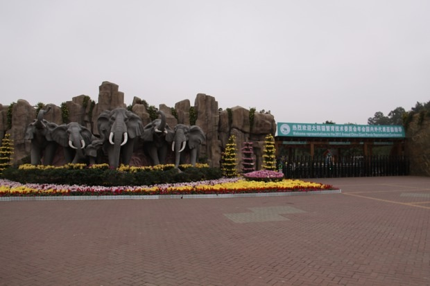 2011-11-07-2011-11-10-Changsha-Ecological-Zoo-001-2