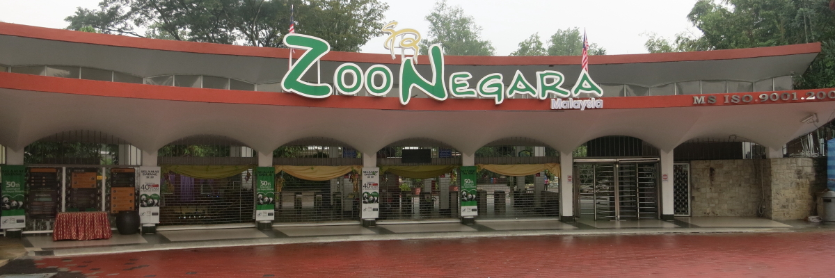 Image result for zoo negara