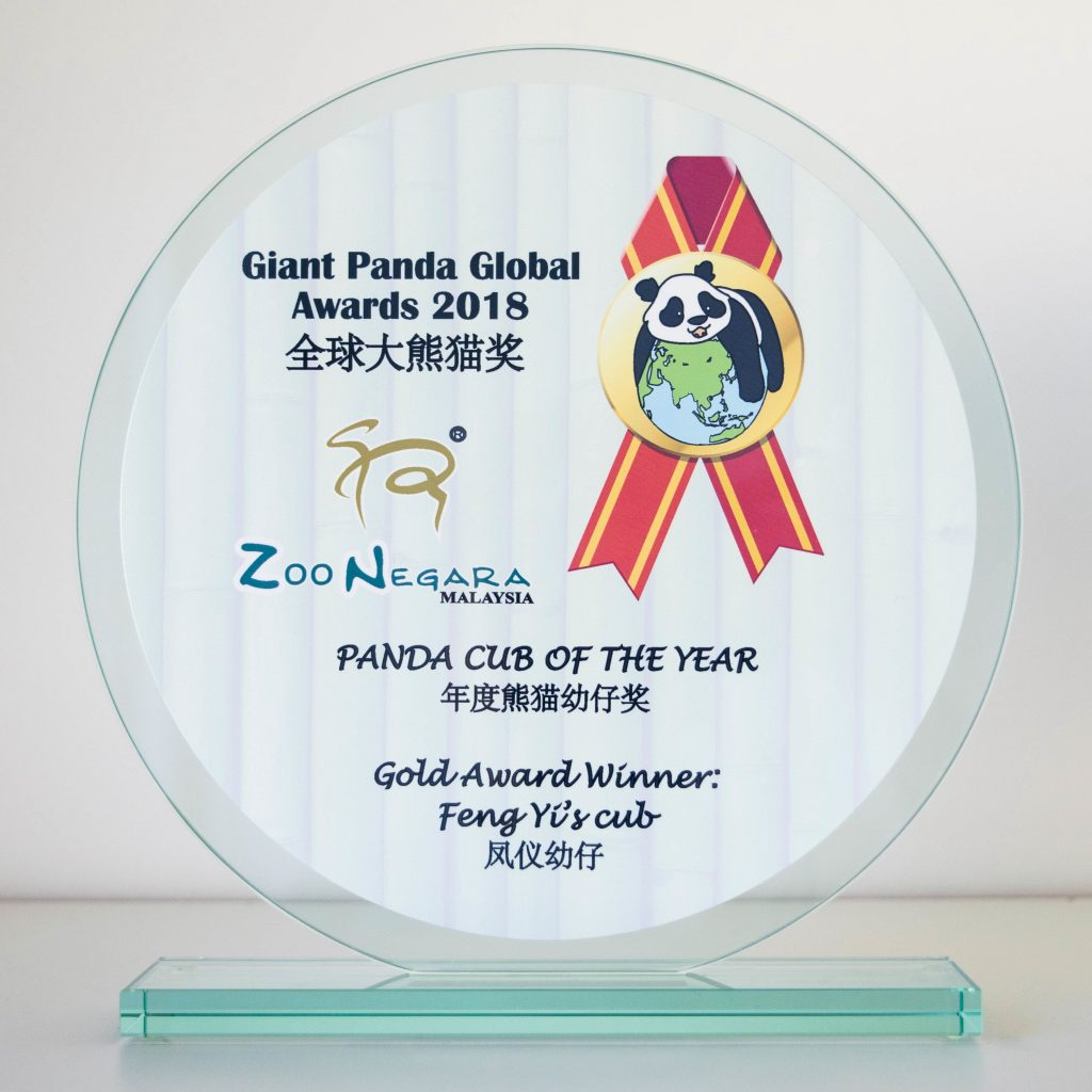 Giant Panda Global Awards 2018: Results