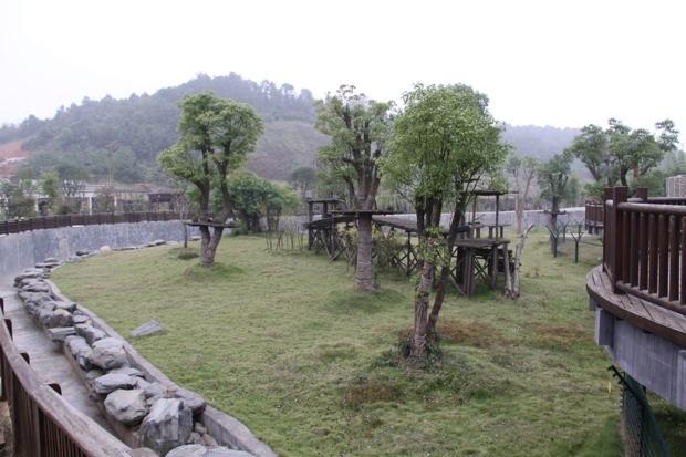 2011-11-07-2011-11-10-Changsha-Ecological-Zoo-017