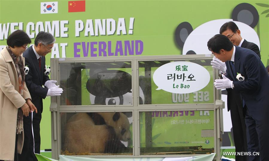 Pandas arrive at Incheon Airport Seoul